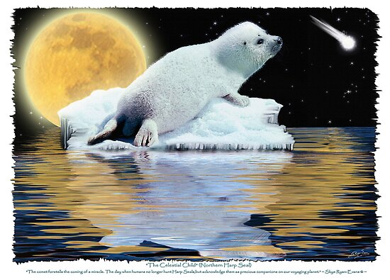 """The Celestial Child"" (Harp Seal) by Skye Ryan-Evans"