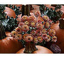 Autumn Arrangement Photographic Print