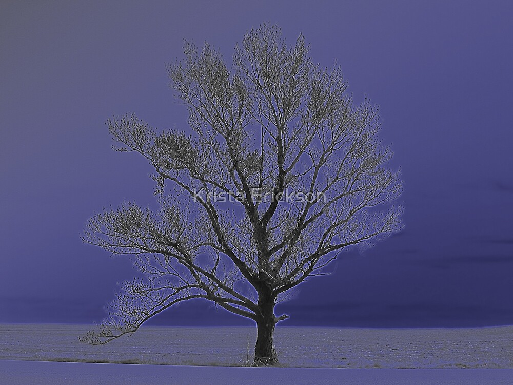 The Lonely Tree by Krista Erickson
