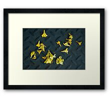 Untitled.00093 Framed Print