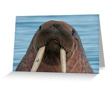 Walrus III Greeting Card
