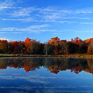 Mirror Reflections by BigD