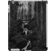 Waterfall iPad Case/Skin