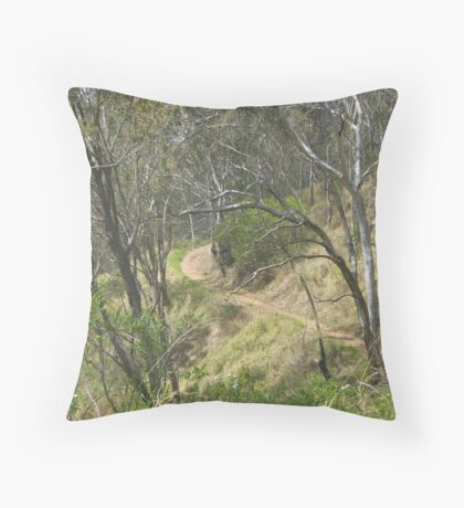 Winding Track Throw Pillow