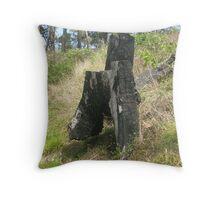 Beyond the Black Stump Throw Pillow