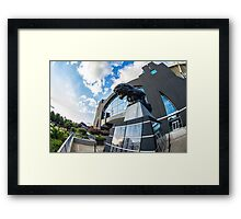 Charlotte Panthers Framed Print