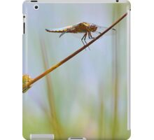 Male Chaser . iPad Case/Skin