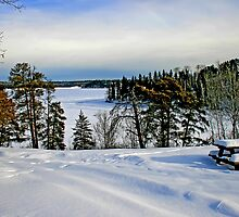 Winter at Caddy Lake by Vickie Emms