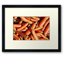 Carrots fresh from the garden. Framed Print