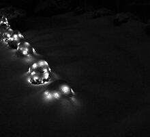 Lights Under Snow by Jonathan Eggers