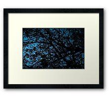 Untitled.00141 Framed Print