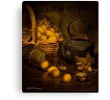 Old Masters Series (print 4)  Canvas Print