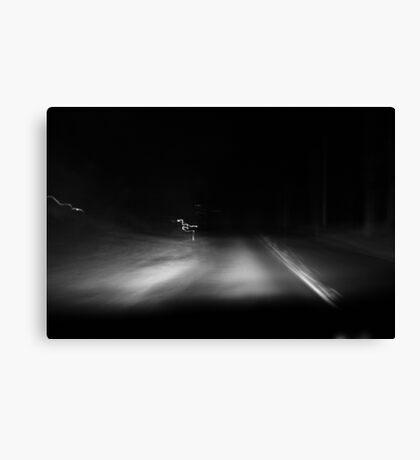 Night Driving. Canvas Print