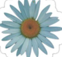 Vintage Daisy Sticker