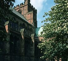 Side of Cathedral Carlisle Cumbria England 198405310001 by Fred Mitchell