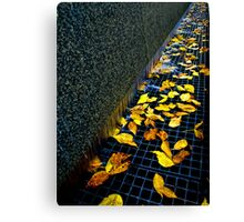 Autumn Grate Canvas Print