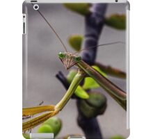 Stick insect on shrub 20150207 1502 iPad Case/Skin