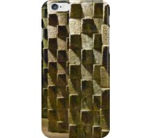 Fortified Wall Art iPhone Case/Skin