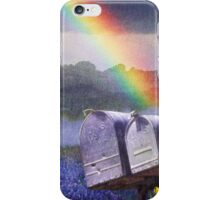 mailboxes bluebonnets and meadowlark in rainbow iPhone Case/Skin