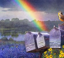 mailboxes bluebonnets and meadowlark in rainbow by R Christopher  Vest