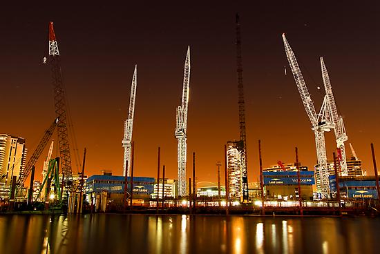 Cranes by Alex Stojan
