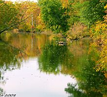 #610  Autumn Reflected by MyInnereyeMike