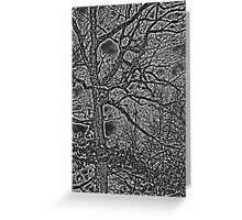 Black White and Gray Bare Tree and Branches Nature Greeting Card