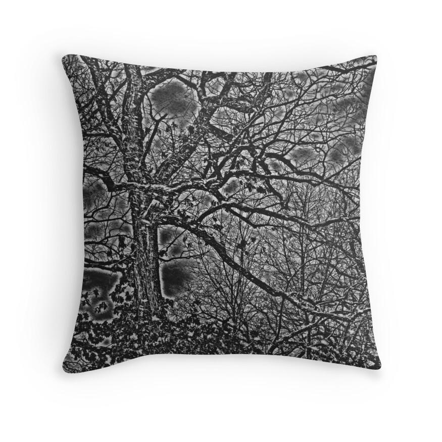 Black White And Gray Throw Pillows :