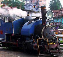 The Darjeeling Himalayan Railway by Vinay Rathore