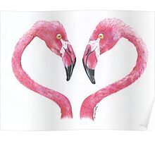 Flamingo Love Poster
