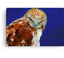 Falcon #1 Canvas Print