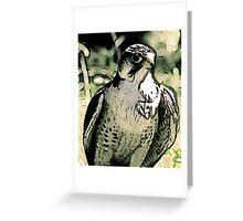 Falcon #2 Greeting Card