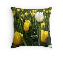 Dare to Be... Throw Pillow