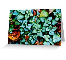Dances With Leaves Greeting Card