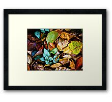 Autumn Blanket Framed Print