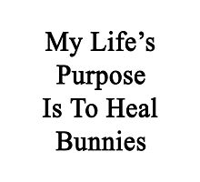 My Life's Purpose Is To Heal Bunnies  Photographic Print