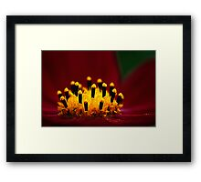Cosmos Candles Framed Print