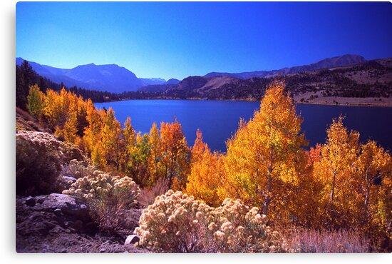 June Lake by steveberlin