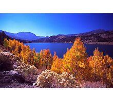 June Lake Photographic Print