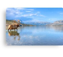 The Great Wide Open Canvas Print