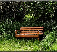 Serenity Bench by Jennie Anderson