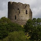 Dolbadarn Castle in Wales by tonymm6491