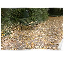 Bench in sea of leaves Poster