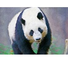Stylized photo of Su Lin, the third giant panda to be born at the San Diego Zoo, San Diego CA. Photographic Print