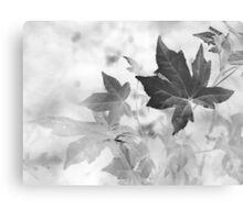 Simple Beauty Speaks Volumes Canvas Print