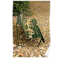 Leaves on Bench Poster