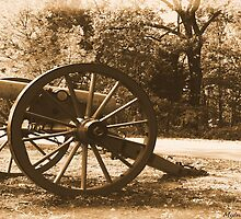 #611    Civil War Cannon by MyInnereyeMike