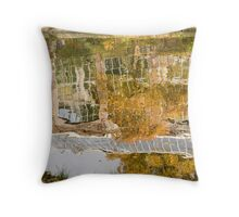 Botanic gardens reflection Throw Pillow