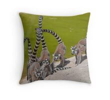 lemur at the zoo Throw Pillow
