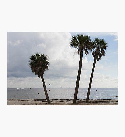 landscape ocean Photographic Print